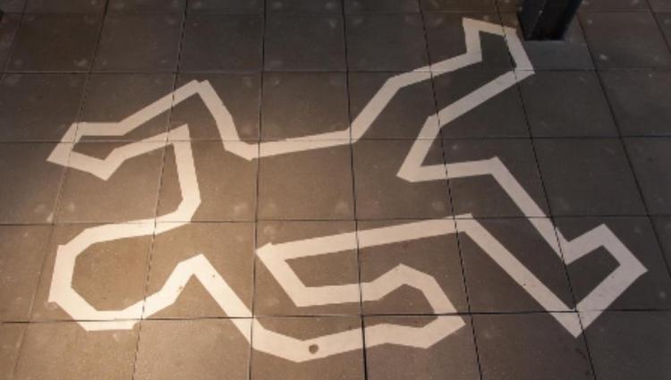 Mordmysterier på Roskildes biblioteker